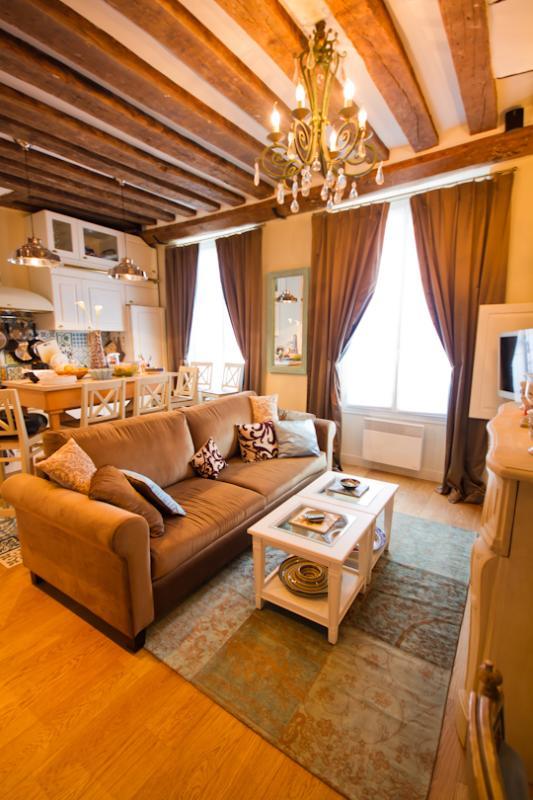 Living room - Marais, Paris - Newly Renovated Luxury Apartment - Paris - rentals