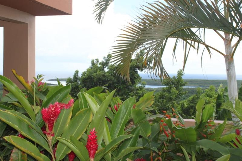 Bayview with Pool Suite - Southside Spectacular Views - Image 1 - Vieques - rentals