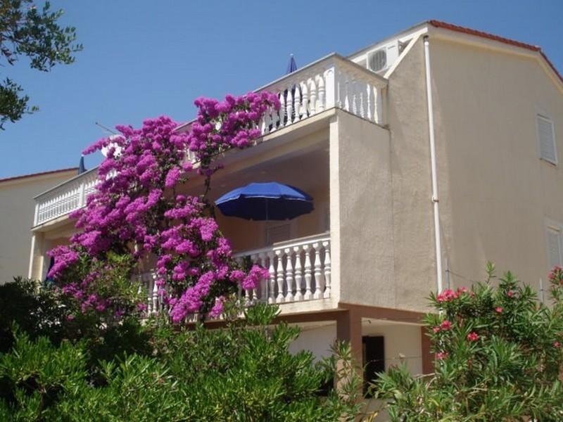 Lovely apartment Megy 1 for 6 persons in Novalja - Image 1 - Novalja - rentals