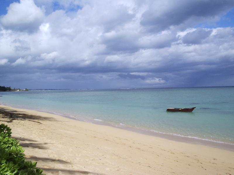Relaxing Sandy Beach - Punaluu Beach 1bd/1ba Condo, #401 - Punaluu - rentals
