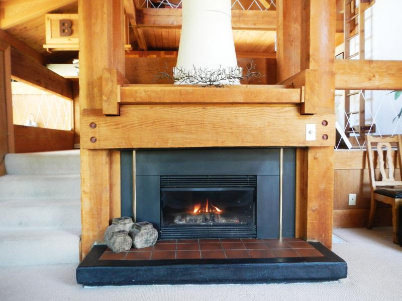 A warm fireplace for those cozy nights - The Perfect South Shore Getaway - Stateline - rentals
