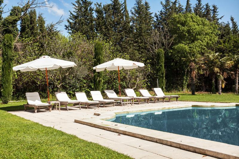 Splendid private Provencal Mas - Image 1 - Arles - rentals