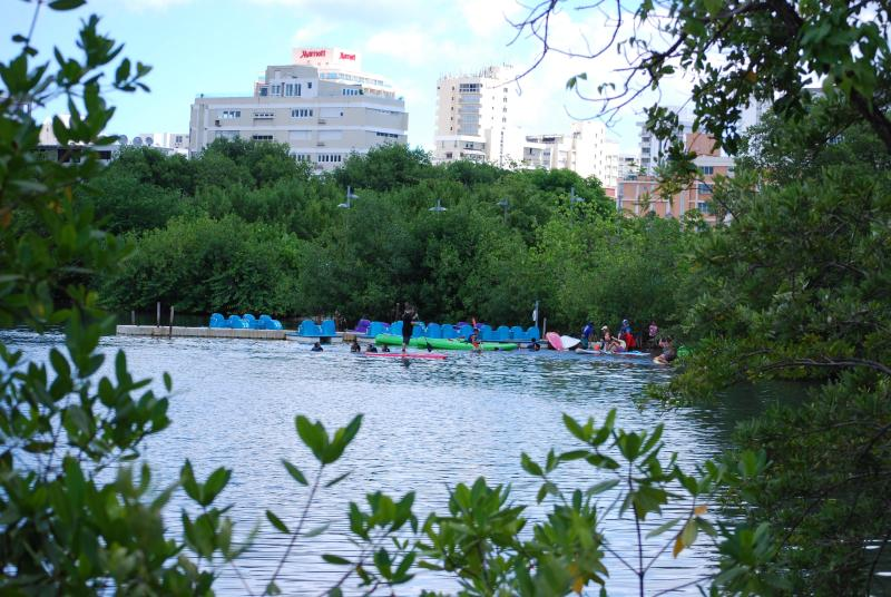 Prime location by the Condado Lagoon Park - Condado Garden Studio by the Lagoon - Puerto Rico - rentals