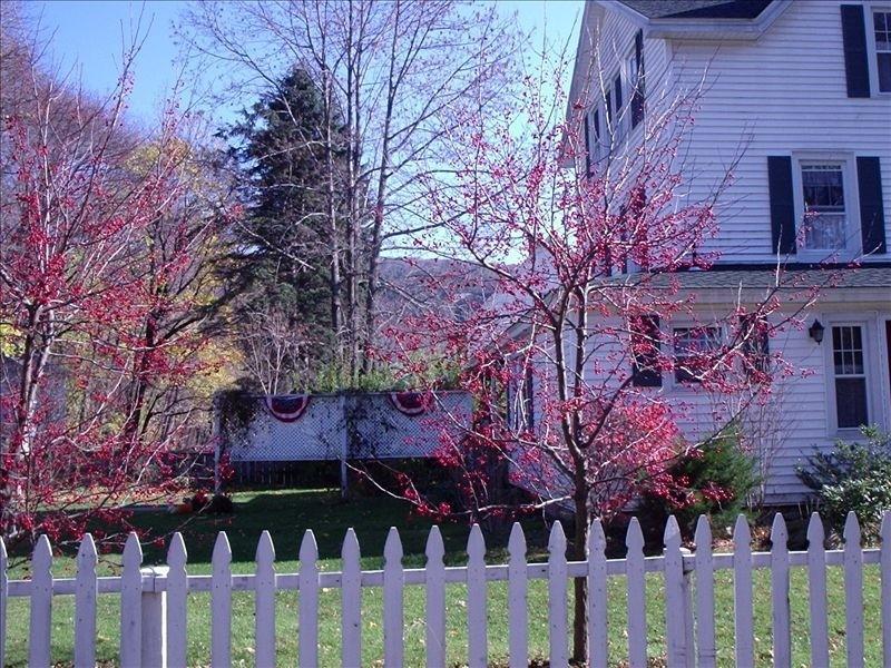 Main House - Charming Village- Great House - Housatonic - rentals