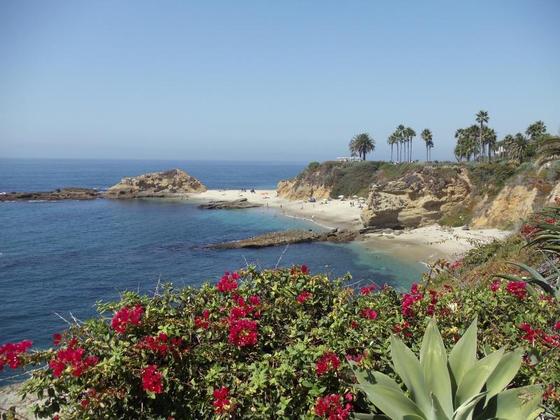 One of the many pristine beaches in Laguna Beach - Stunning Contemporary Ocean view home near Beach - Laguna Beach - rentals