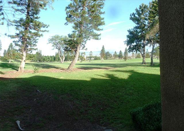 Golf Course View - Waikoloa Fairways C118 - Kohala Coast - rentals