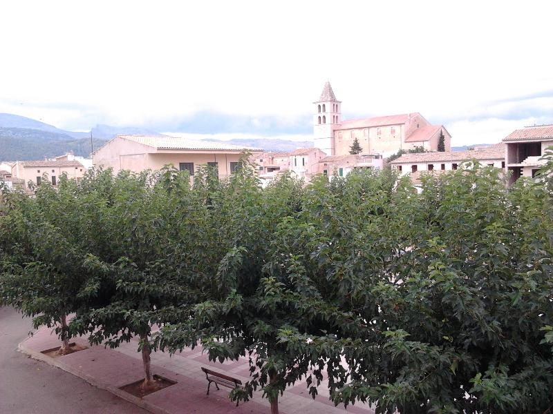 View from terrace - Nice Coves Apartament in Campanet 4 bedroom. - Campanet - rentals