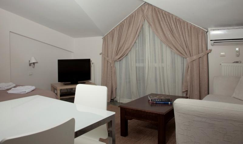 PENTHOUSE TERRACE STUDIO - Image 1 - Istanbul - rentals