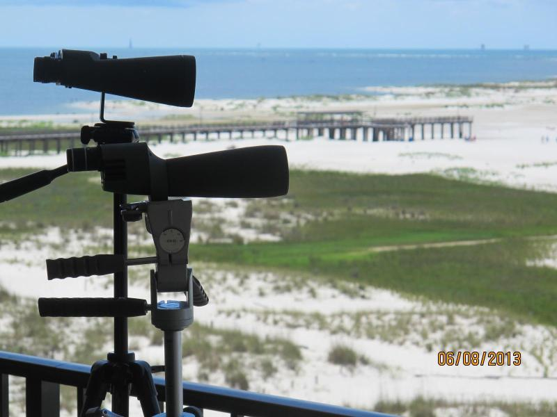 Southeast view from private balcony - Luxury Dauphin Island Beachfront Holiday Isle Condo - Dauphin Island - rentals