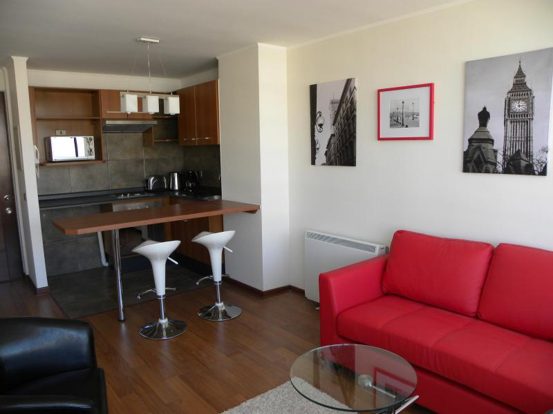Living room and kitchen area - 1 bedroom apartment, Park view and Bellavista - Santiago - rentals