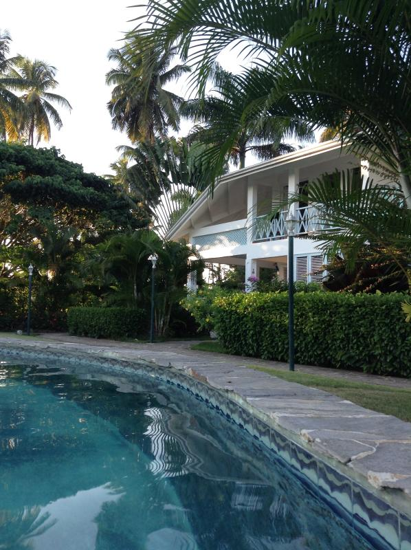 Our Paradise! - Cotorra Azul Beautiful Villa - Las Terrenas - rentals