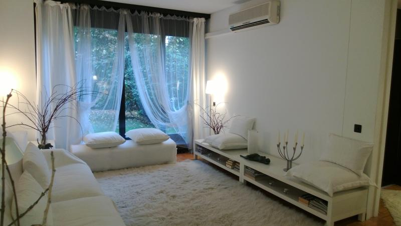 LIVING AND SOUTHERN WINDOW - PARCO 1 LUGANO DOWNTOWN - Lugano - rentals