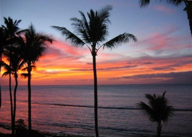 Schools Out For Summer Special!! Inquire Within!! - Image 1 - Lahaina - rentals