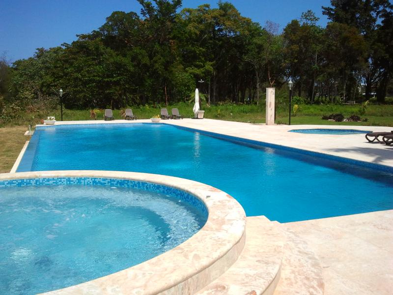 Our infinity pool - Luxury oceanfront apartment - Sosua - rentals