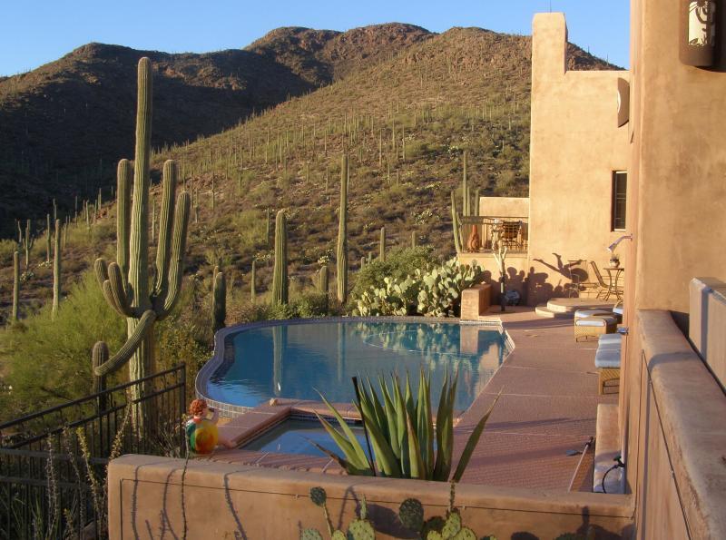 Beautiful Zero Edge Pool and Spa - Tucson Luxury Bed and Breakfast - Adobe Rose - Tucson - rentals