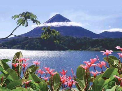 Volcano View - Arenal Maleku Luxury Condominium 12-2-2-2 - Washington - rentals