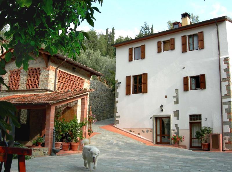 La Mugnaia - La Mugnaia, Reggello, Florence,  Tuscany - Reggello - rentals