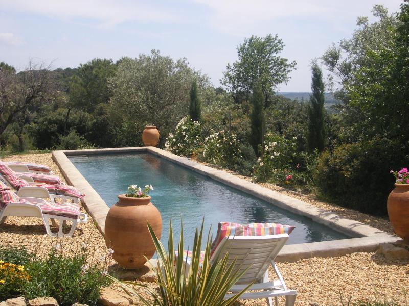 maison de charme dans domaine viticole Languedoc Hérault France - Image 1 - Gabian - rentals