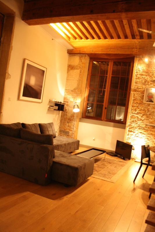 LE LOFT DES AUGUSTINS - Center And Vieux Lyon - Image 1 - Lyon - rentals