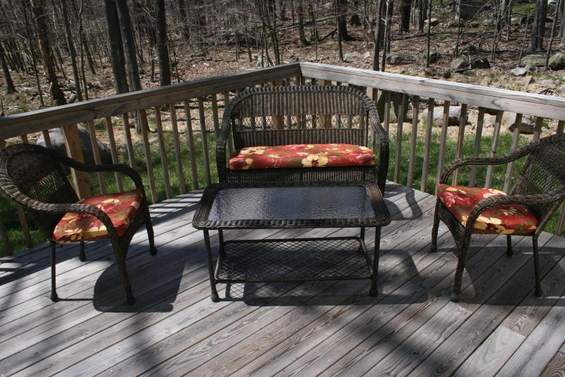 Brand New, Custom Made Beautiful House In the Heart of Pocono's! - Image 1 - Tobyhanna - rentals