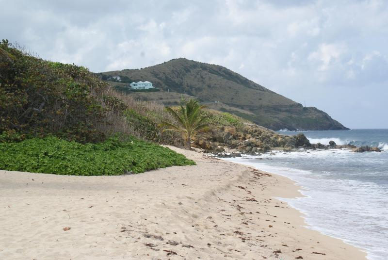 Beach at Gentle winds - Peace & Paradise at Gentle Winds - Christiansted - rentals