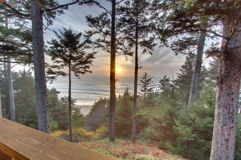 Oceanfront home w/ amazing views - walk right to the beach! - Image 1 - Otter Rock - rentals