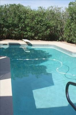 Huge Heated Pool - 16 X 34 feet - 3 BR 2 BA Villa, Huge Heated Pool Nr Chabad - Scottsdale - rentals
