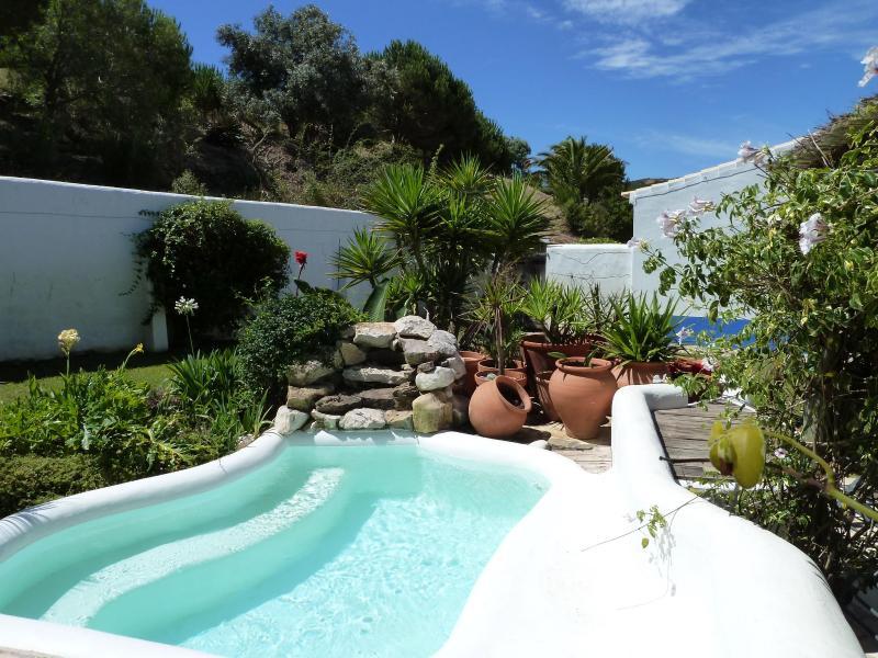 Refreshing Plunge Pool - Wonderful Family Holiday West Algarve Portugal - Barao de Sao Joao - rentals