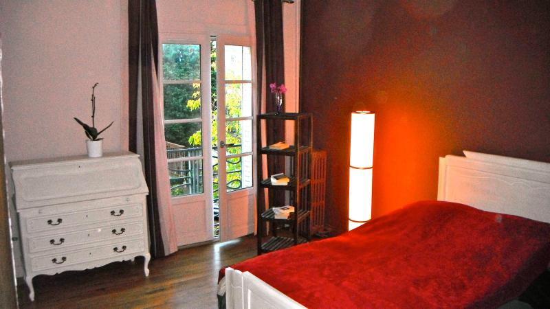 flat in the center of Tours - Image 1 - Tours - rentals