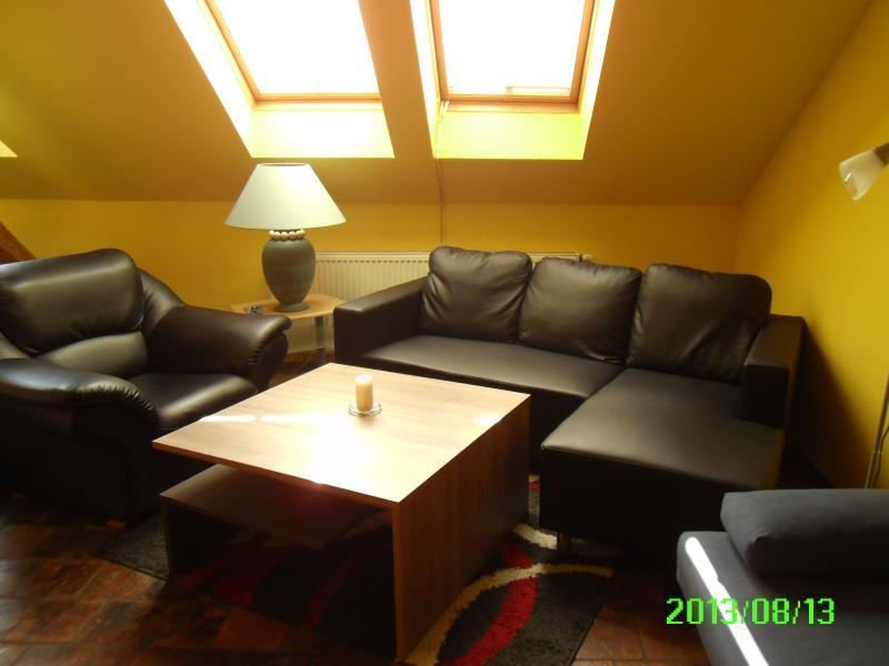 Livingroom - Appartment Smeralova - Prague - rentals