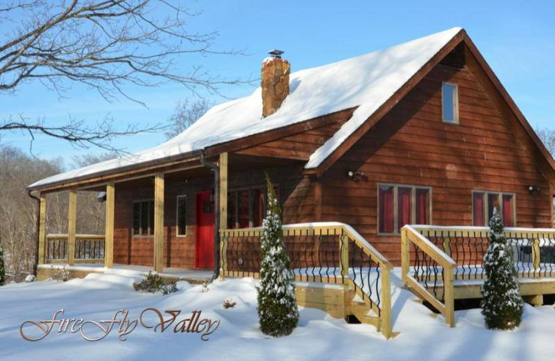 Firefly Valley Lodge - Image 1 - Carbondale - rentals