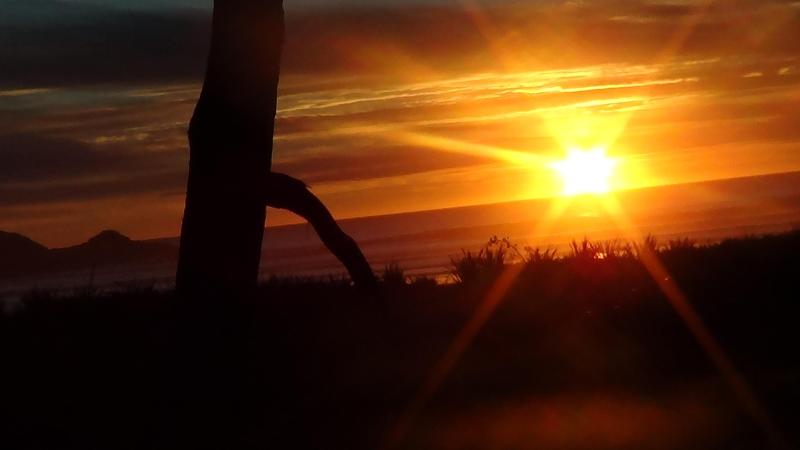 Our beautiful sunsets - Beach Front Cottage - Charleston - rentals