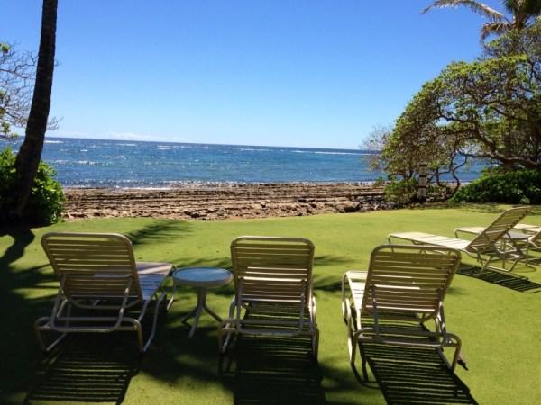 Kapaa Shore 117 Oceanfront Pool - Kapaa Shore 117 - Kapaa - rentals