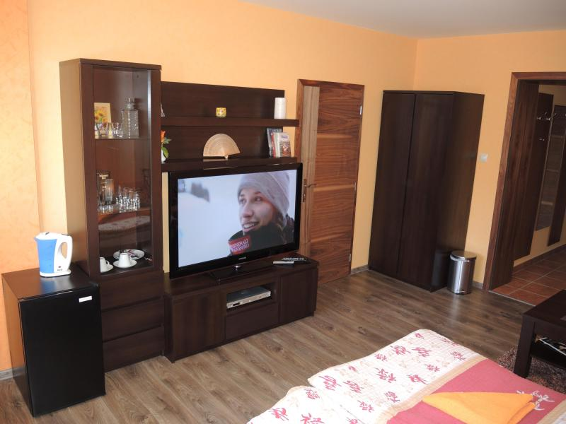 Apartmany Rudolf - Image 1 - Spisska Nova Ves - rentals
