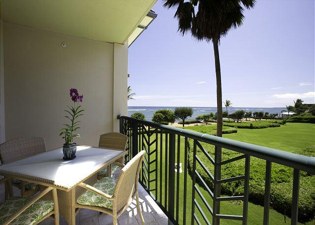H303 PRIVATE Ocean WOW! Fast WIFI!  CALL - Image 1 - Kapaa - rentals