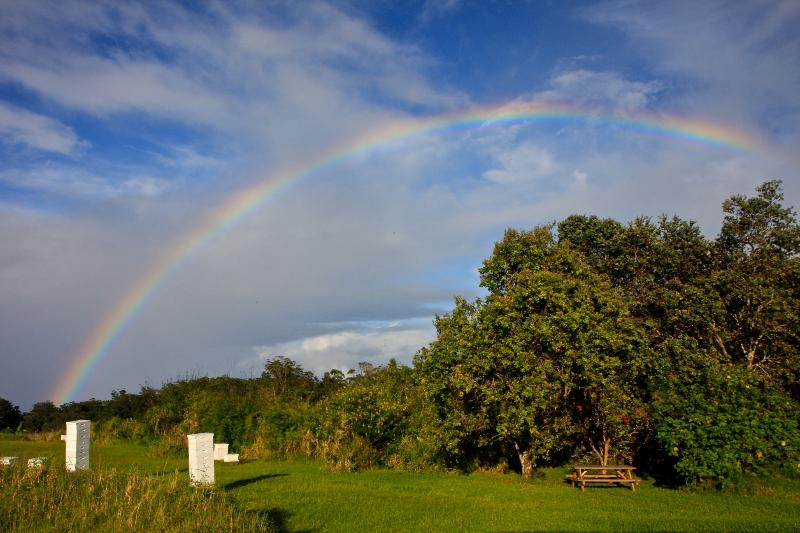 Rainbow over our farm and bee hives - Rainbow Bee Farm Cottage - Honokaa - rentals