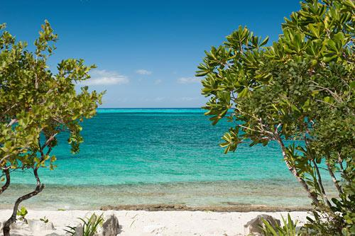 Cottages at Grace Bay - Ocean Edge - Image 1 - Providenciales - rentals