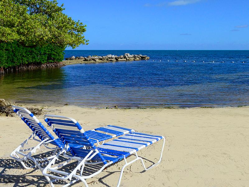 Private Beach - OCEANFRONT CONDO WITH ALL AMMENITIES! - Tavernier - rentals