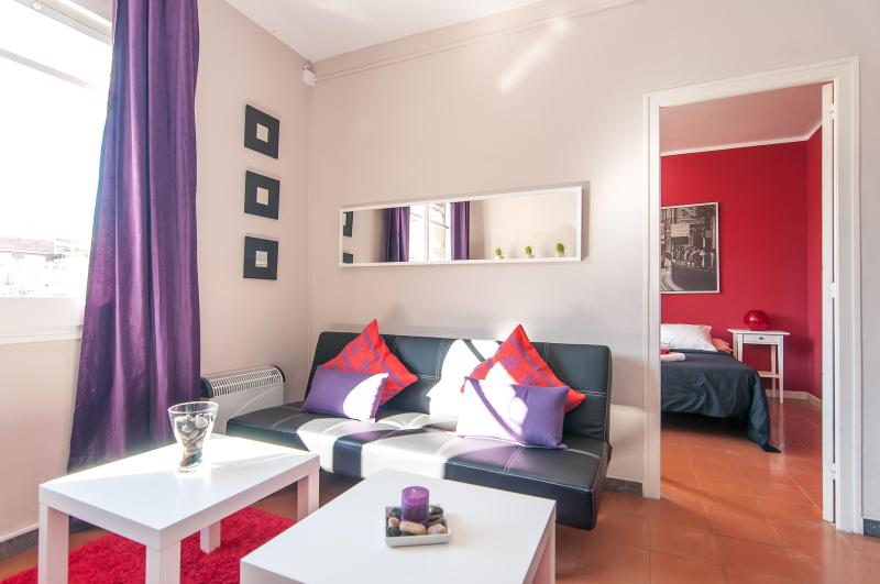 Spacious 4 bedroom near Arc de Triomf - Image 1 - Barcelona - rentals