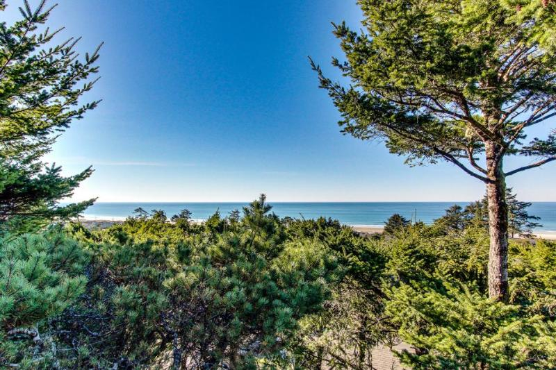 Lovely oceanview, pet-friendly home - Image 1 - Waldport - rentals