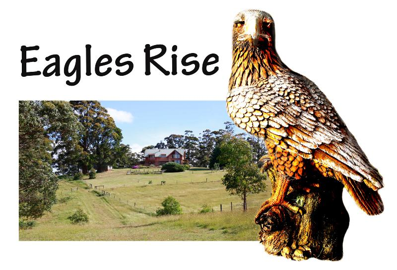 Eagles Rise Awaits You! - A Cozy Cabin in the Clouds - Gawler, Tasmania - Ulverstone - rentals