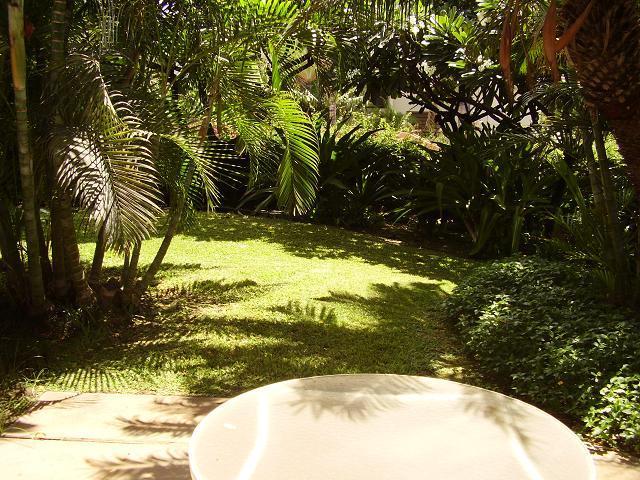 Maui Kamaole 1 Bedroom Garden View K110 - Maui Kamaole 1 Bedroom Garden View K110 - Kihei - rentals