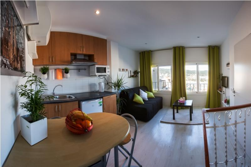 Panoramic Studio Duplex Park Guell !! - Image 1 - Barcelona - rentals