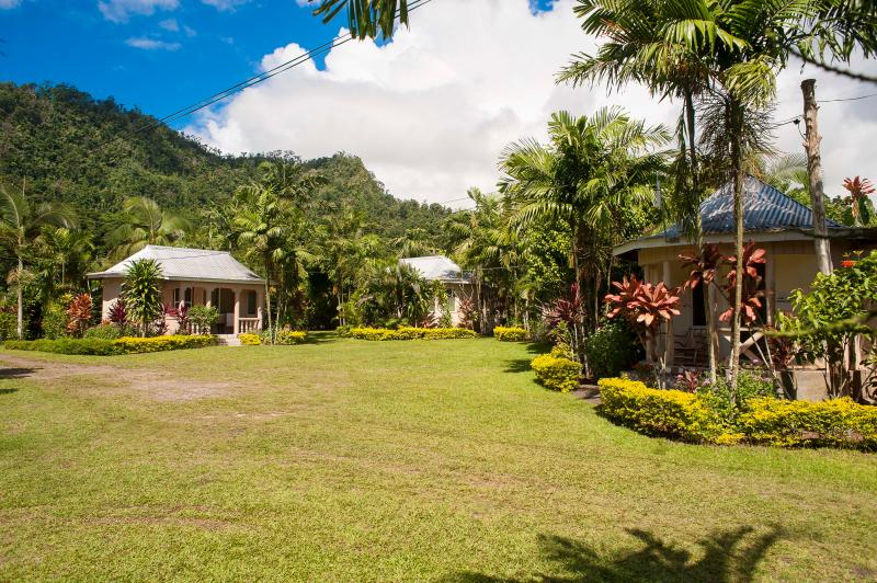 View of Mt Vaea - TALANOA FALES ACCOMMODATION - Apia - rentals