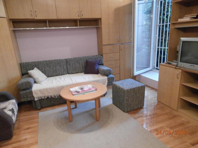Apartman Lavanda Zagreb *** in centre of town - Image 1 - Zagreb - rentals