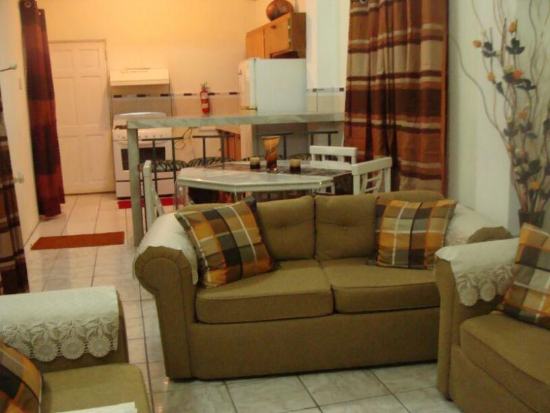 Living Room - Visitor's Accommodation In Trinidad - Port of Spain - rentals