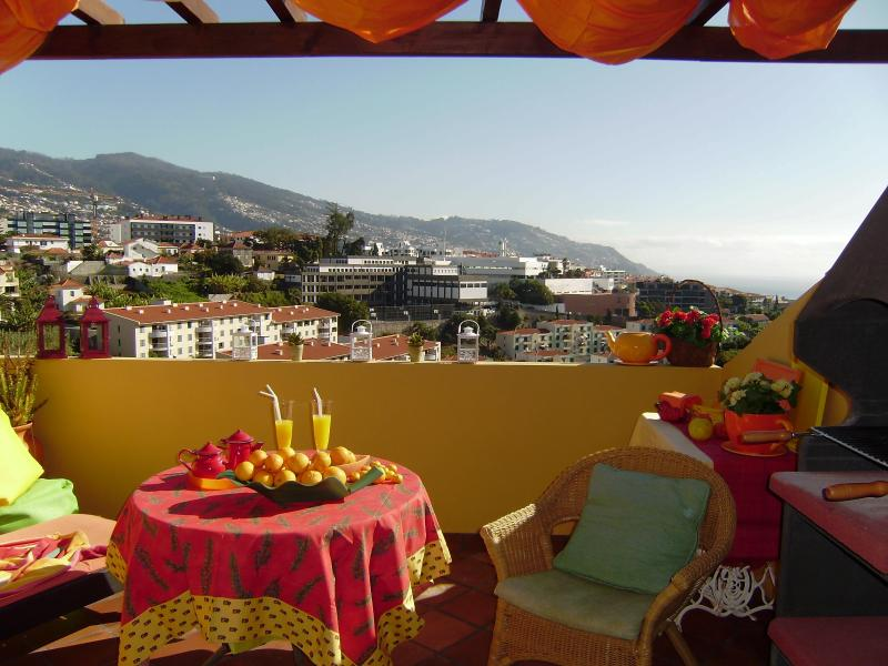 PRIVATE POOL, fantastic view, wifi, air cond, park, - Image 1 - Funchal - rentals