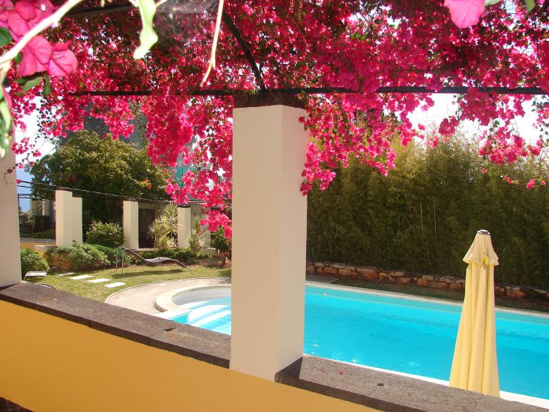 Inviting pool...all yours!!! - HIGH LIGHTS: VIEW, POOL, LOCATION, FAST WIFI, PARK - Funchal - rentals