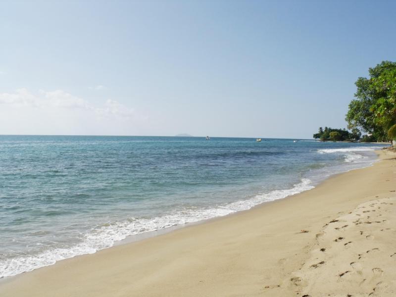 Your beautiful condo beach - Beautiful Penthouse across the beach - Rincon - rentals
