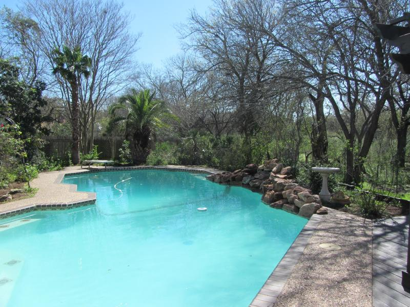 Everyone's favorite.  The pool with a diving board (the city will no longer allow diving boards). - San Antonio Botanical Paradise with Private Pool - San Antonio - rentals
